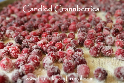candied cranberry recipe