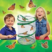 Amazon: Insect Lore Butterfly Garden with Live Cup of Caterpillars $19.08...