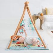 Amazon: Infant and Toddler Camping Cubs Activity Gym and Playmat $67.99...