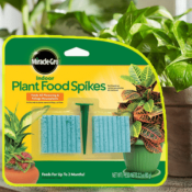 Amazon: 48 Spikes Miracle-Gro Indoor Plant Food $2.24 (Reg. $5.59)