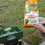 Amazon: Scotts Turf Builder Lawn Food With Insect Control $24.98 (Reg....