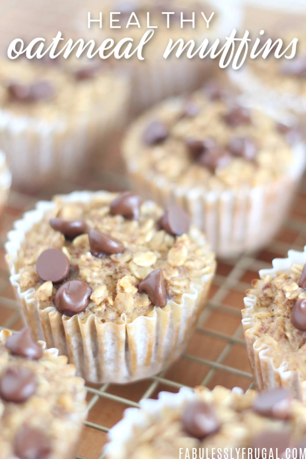 Healthy breakfast oatmeal muffins to go
