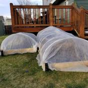 Amazon Holiday Deal: 8 Ft x 24 Ft Plant Covers Freeze Protection $10.55...