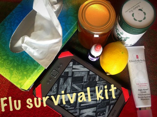 flu survival kit blog