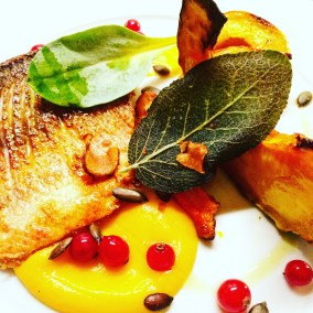 Dish, Bass, Squash and Curreents
