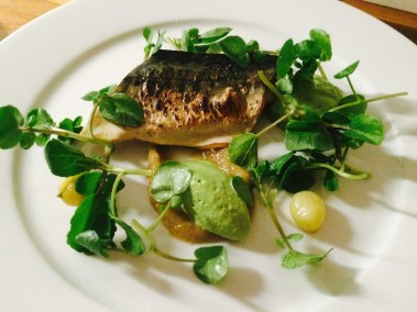 Mackerel, Gooseberry, Watercress