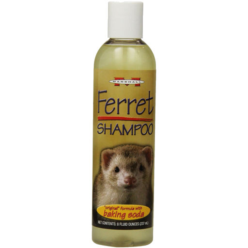 Marshall Ferret Shampoo