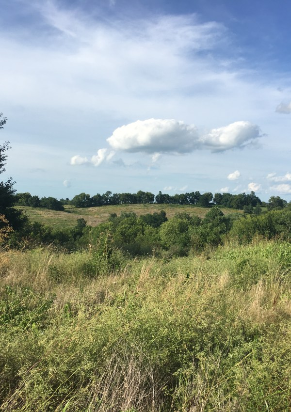 Hike For Beer With a Twist | Shaker Village