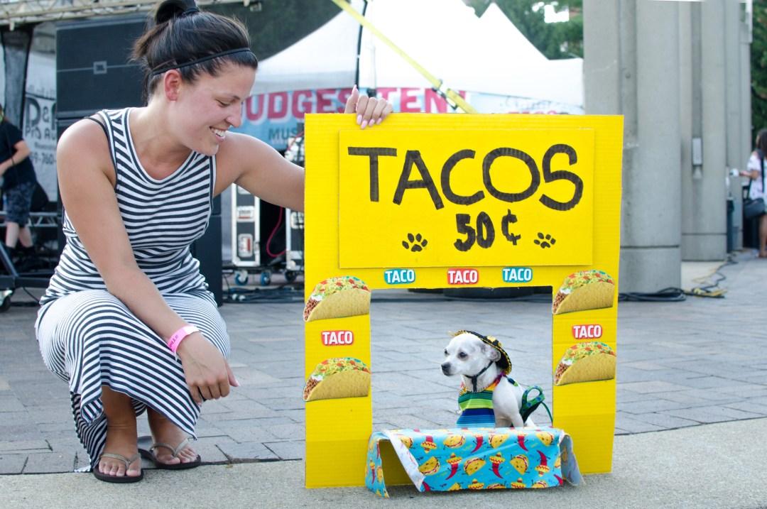 cincinnati taco festival