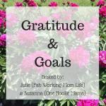 Gratitude and Goals December 2016 #GratitudeGoals