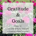 Gratitude and Goals November 2017 #GratitudeGoals