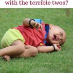8 Tips for Taming Your Unruly Toddler