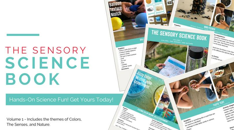 Hands On Sensory Science Fun banner