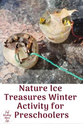 Nature Ice Treasures Winter Activity for Preschoolers | Fab Working Mom Life #kidsactivities #winter #naturetreasures #preschoolers #kidscrafts