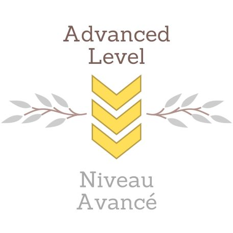 Advanced Pattern Level L1 Level