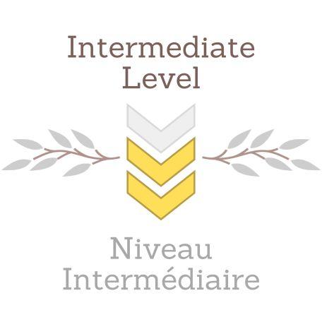 Modèle Niveau 2