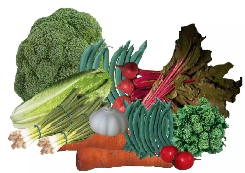 Broccoli and dark leafy vegetables
