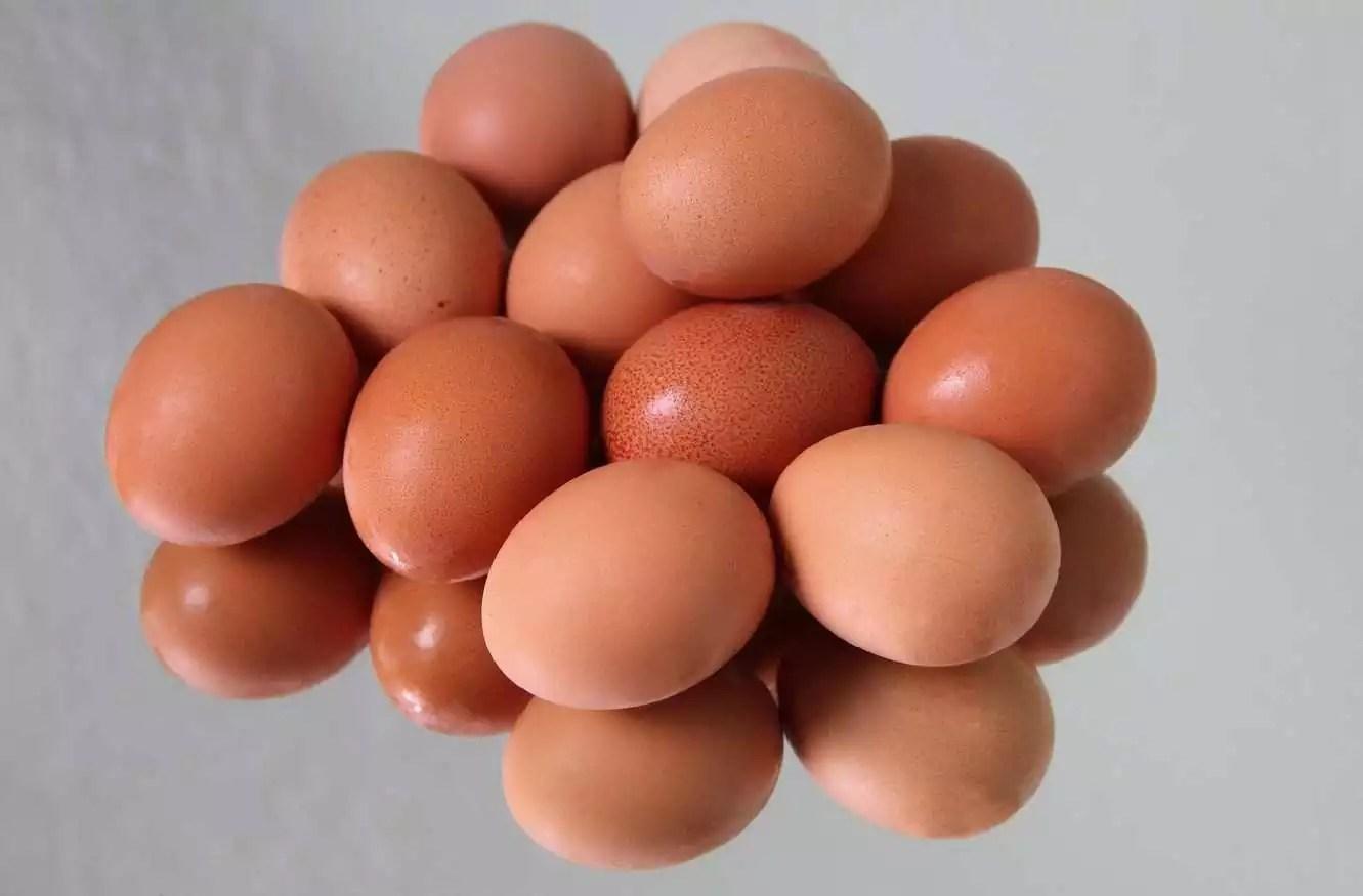 Eggs for pregnant women