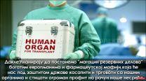 organi
