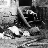 ДА СЕ НЕ ЗАБОРАВИ И НЕ ПОНОВИ: ПОКОЉ У СТАРОМ БРОДУ 1942.