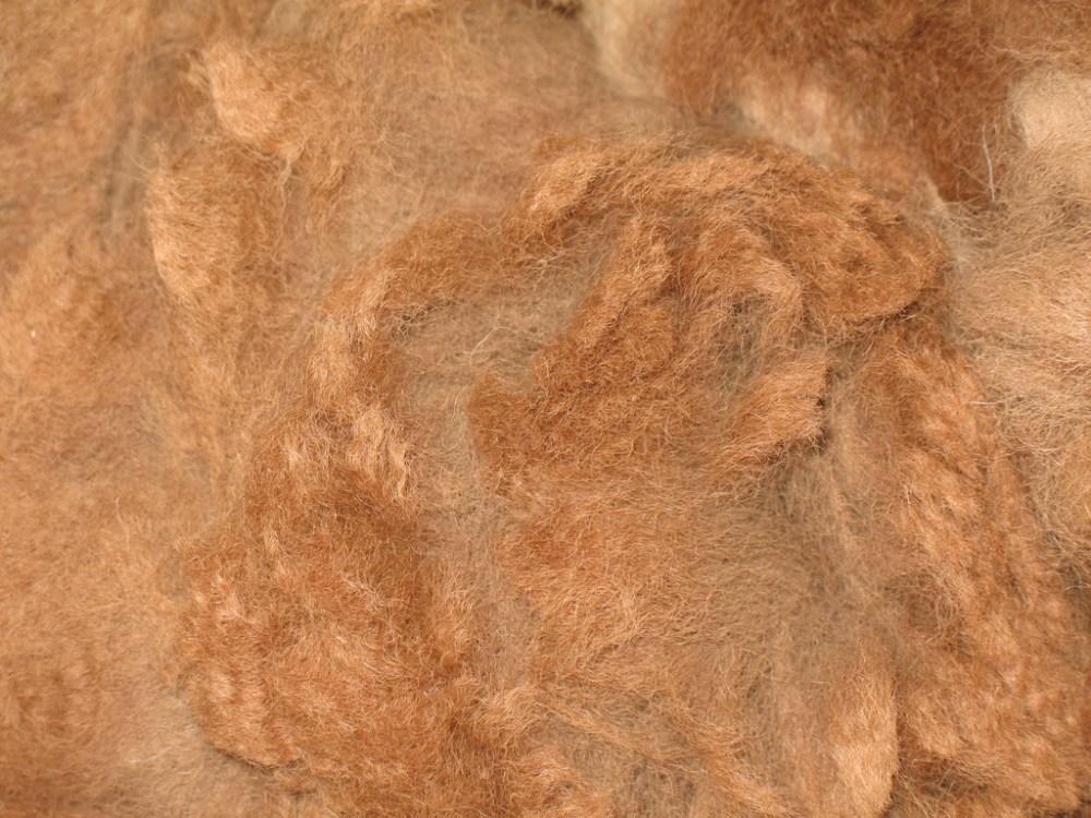 Wool Gathering (5/6)