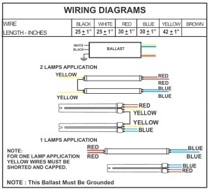 2 Lamp T12 Ballast Wiring Diagram Collection   Wiring Diagram Sample