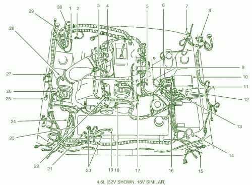 small resolution of gt wiring harness explore schematic wiring diagram u2022 rh webwiringdiagram today 1964 ford falcon 1966 ford