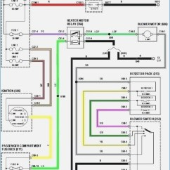 Wiring Diagram For Toyota Corolla Stereo Legend Air Suspension 2010 Radio Gallery Sample Collection 2006 Realestateradio 15