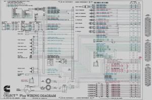 Cummins M11 Ecm Wiring Diagram Sample | Wiring Diagram Sample