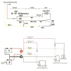 Rv Water Pump Wiring Diagram Blank Nerve For Electricity Site Library