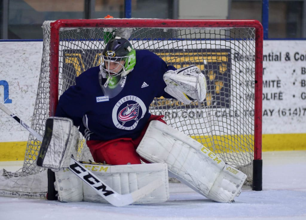 Leafs trade Mikko Lehtonen to Columbus for Veini Vehvilainen