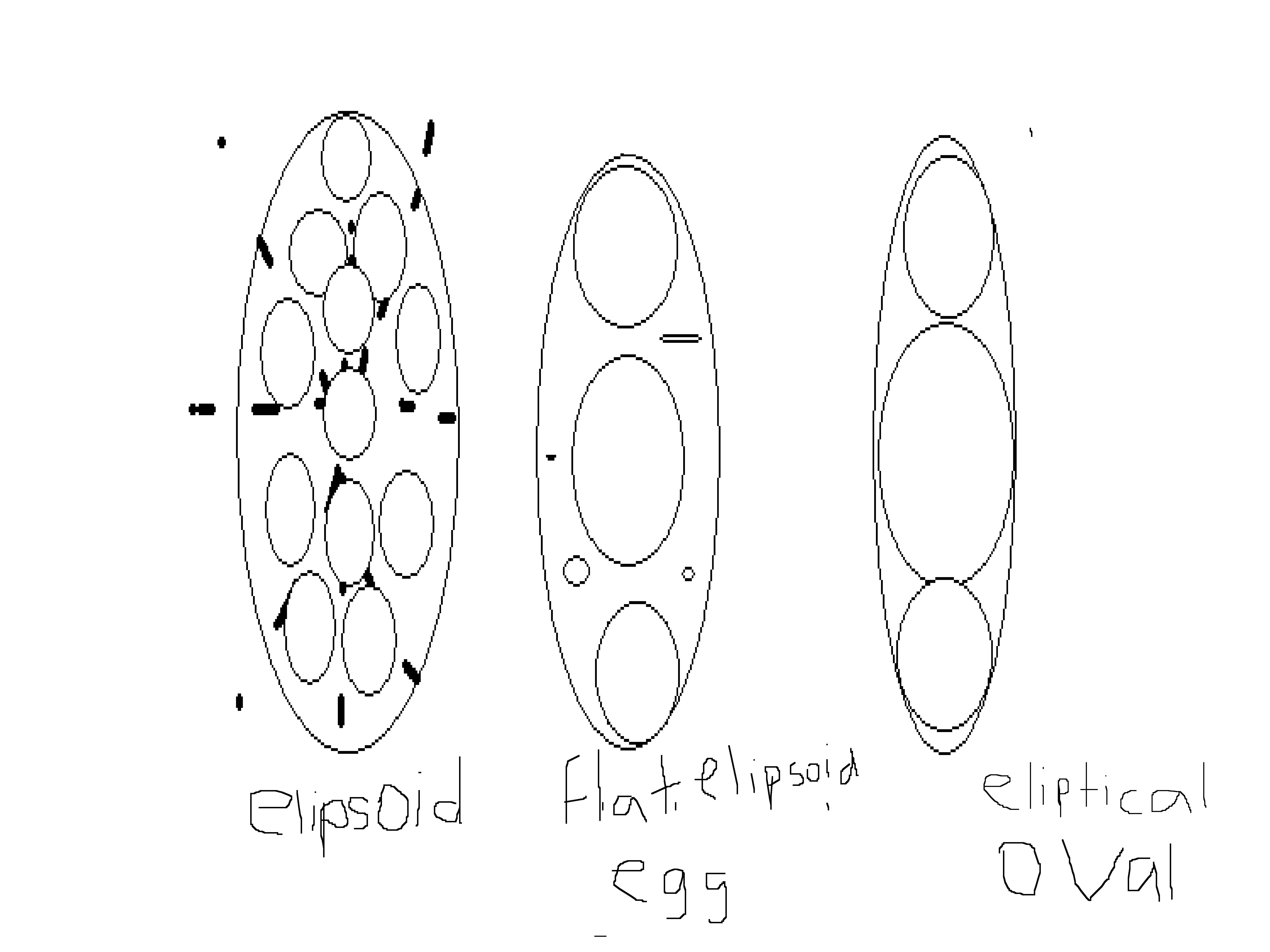 Individualyzations Of Egg Shaped Elipsoids Face