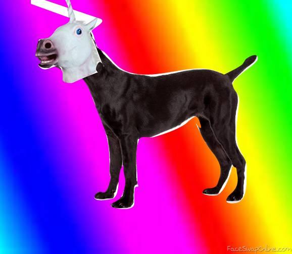 Face swap dog 2260320 - stthay info