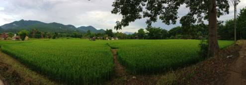 near Ing Doi in Pai