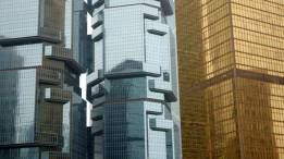 Koala bear climbing a building