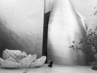 at Disney Hall in Los Angeles
