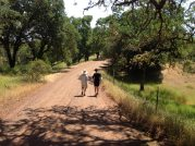 Walking with Charlie near his property in Ukiah