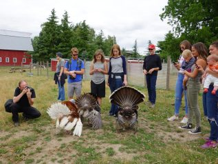 at the farm sanctuary in Salem