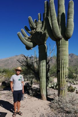 """Chuan next to a rare """"crested"""" saguaro - on the left. It looks deformed. But it's just special."""
