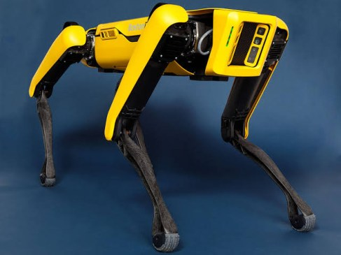 robotic dog spot