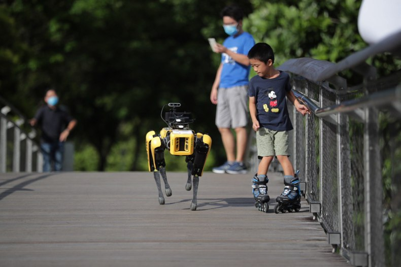 robot dog in singapore