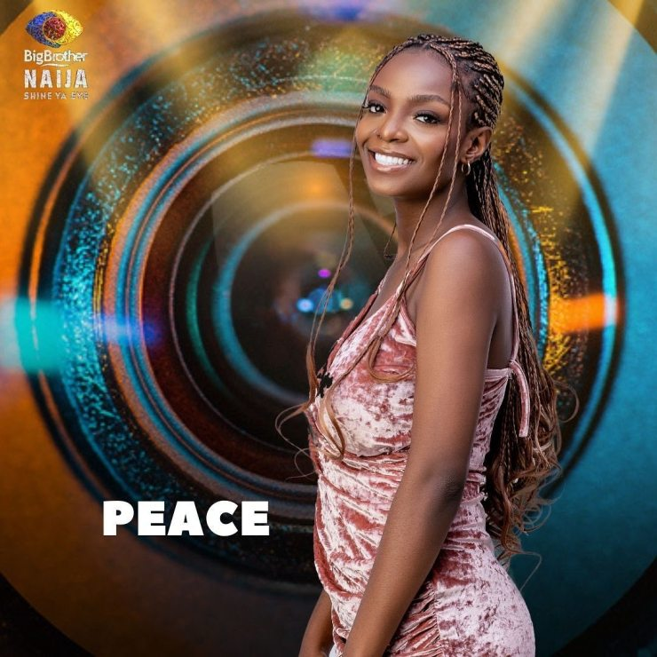 Big Brother Naija 2021 housemates pictures