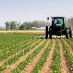 FACT CHECK: Has Nigeria's agricultural output really reduced or increased since PDP left power?
