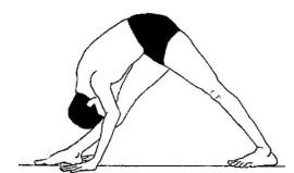 parshvottasan-Intense-side-stretch