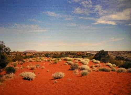 Rain Fall Live Wallpaper 10 Facts About Australian Deserts Fact File