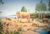 10 Facts about Cenozoic Era Fact File