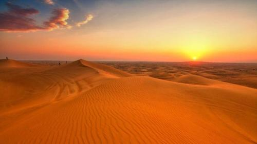 Falling Leaves Wallpaper Live 10 Facts About Deserts Fact File