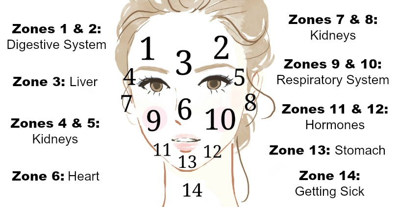 hormonal acne diagram fj1200 wiring what is your telling you
