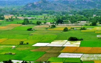 Cultivable land down by 12 lakh Hectares_factly.in