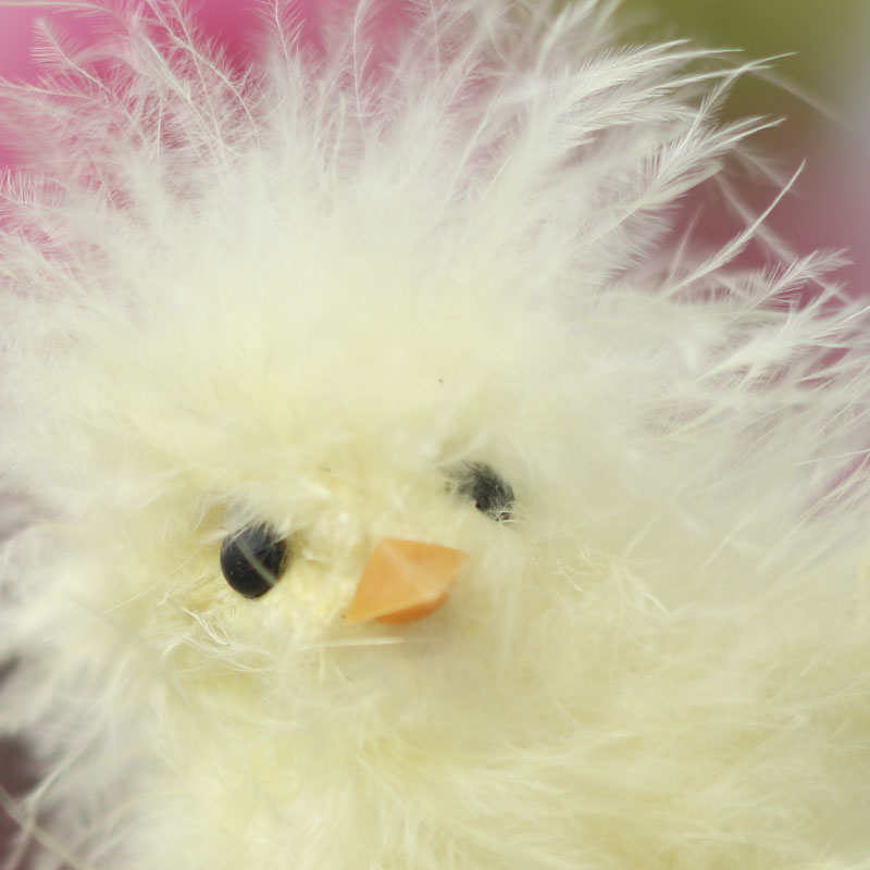 Feathered Baby Chick  Spring and Easter  Holiday Crafts